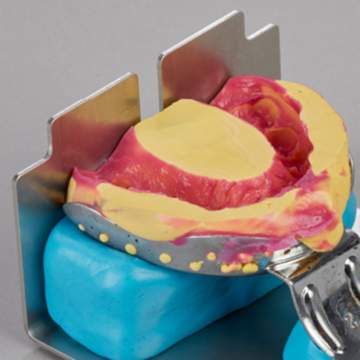 Dental Model systems